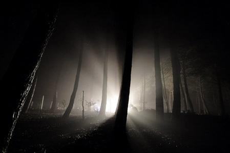 light-in-darkness[1]